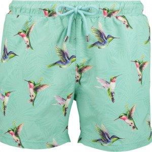 Panos Emporio Hummingbird Apollo Uimashortsit
