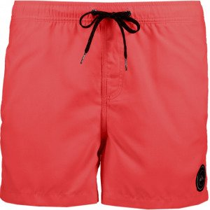 Quiksilver Everyday Volley 15 Uimashortsit